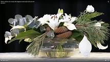 FloralDesignBrasil.QuadroVerde.AnoNovo20