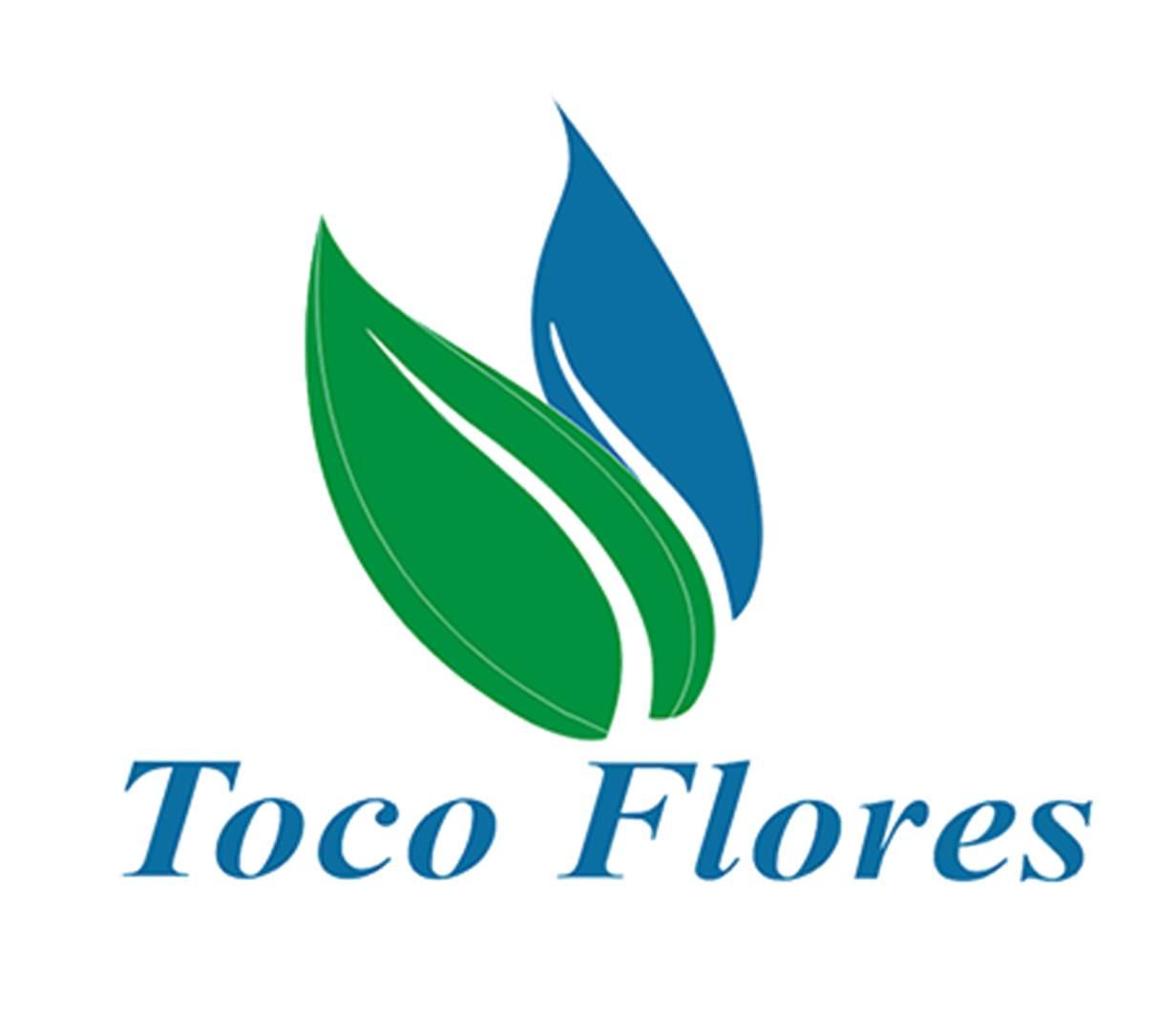 Logo Toco Flores