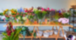 floresefolhagens.jpg