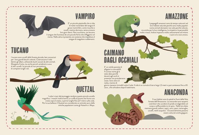 The Atlas of Animals