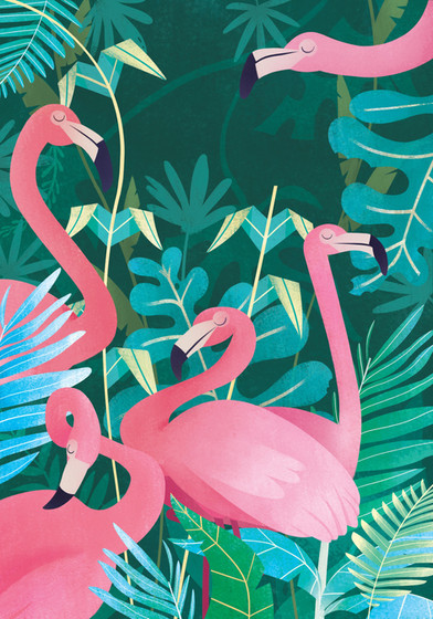 Fantastic Animals, High Quality Collection, Flamingos
