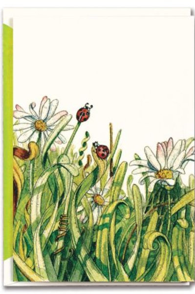 Ladybugs & Daisies: Blank Note Card