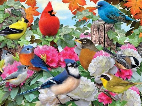 Garden Birds: 500 Piece Puzzle
