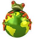 frog world.jpg
