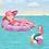 Thumbnail: Aqualicious