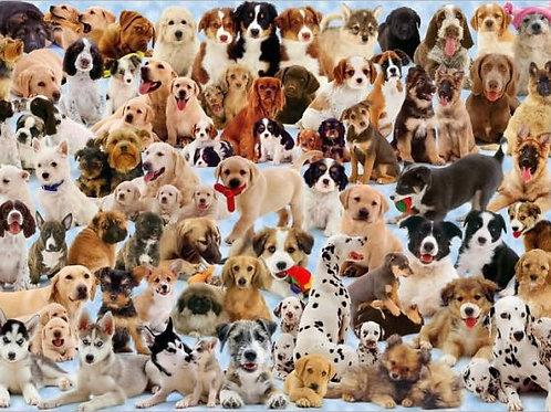 Dogs Galore! - 1000 piece puzzle