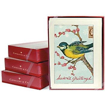 Bird on a Branch Christmas Cards