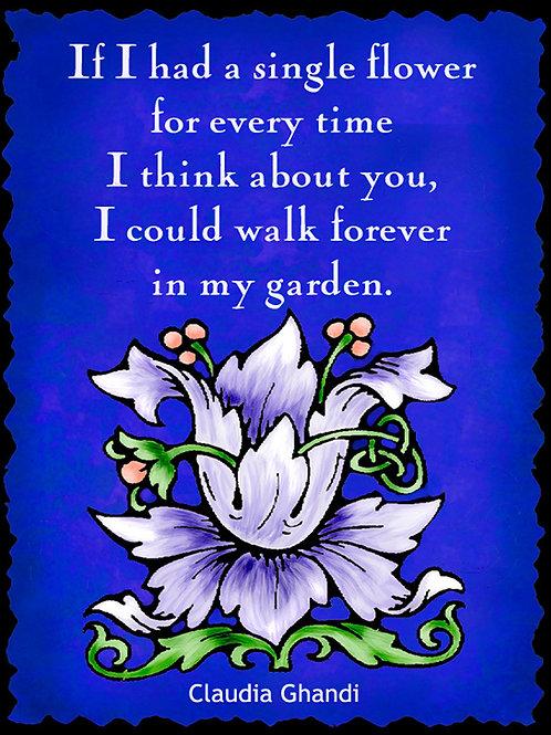 If I had a single flower: Claudia Ghandi -