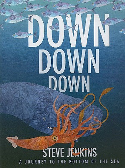 Down, Down, Down: A Journey to the Bottom of the S