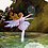 Thumbnail: Fairyland - Pictures and Poems