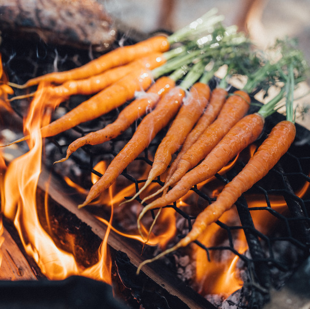 carrots-food-cooking-lapland-material-ba