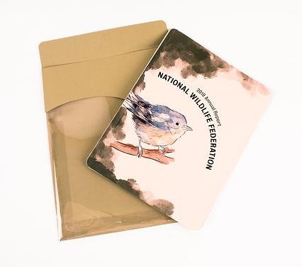 nwl book cover.jpg