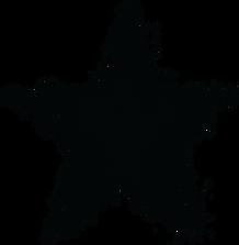 PROPAGANDA_STAR VECTOR_BLACK.png