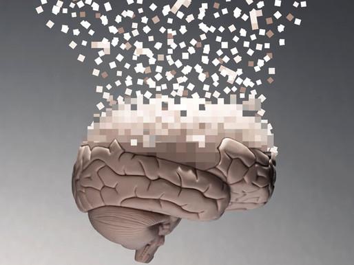 Controversia acerca de la viabilidad del Human Brain Project