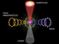 Noticias sobre ingeniería biomédica