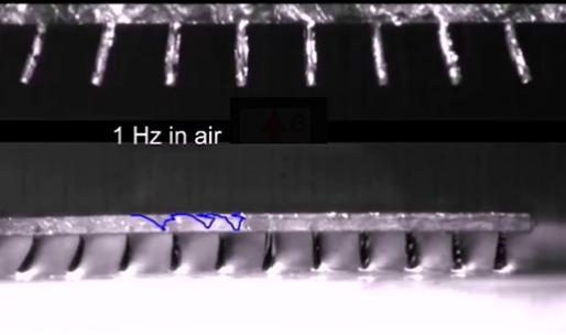 Consiguen replicar los cilios de las células para construir micro-robots