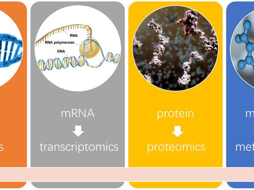 Charla online:  La bioinformática al servicio de la metabolómica