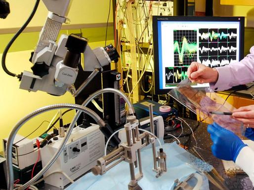 Charla: La vida del ingeniero biomédico tras finalizar el grado: testimonios de antiguos alumnos