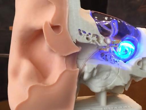 Devuelven la audición a roedores empleando tecnología optogenética