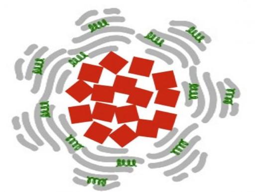 Usando nanoparticulas magnéticas para combatir ataques al corazón