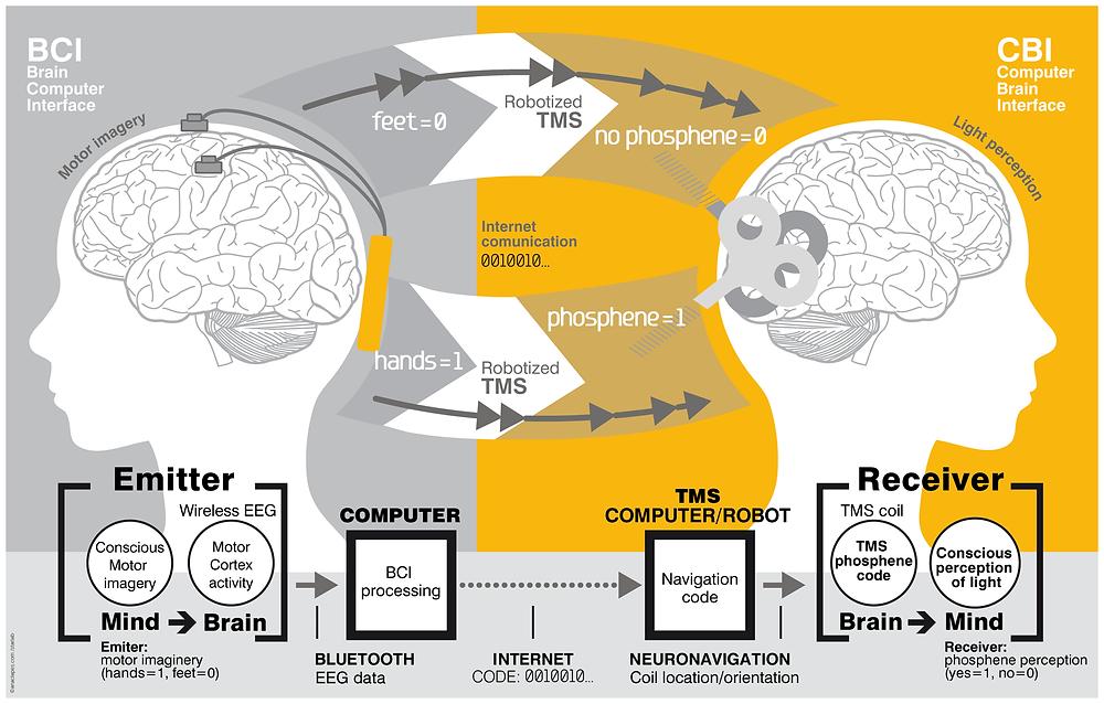 BrainToBranComunucation.png