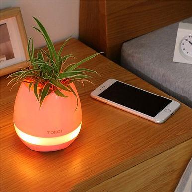 Lamp Flower Pot Wireless Bluetooth Speaker