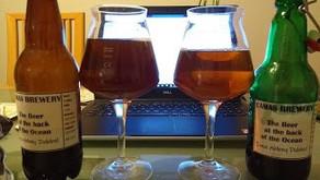 Glass vs Plastic bottles for long term beer storage