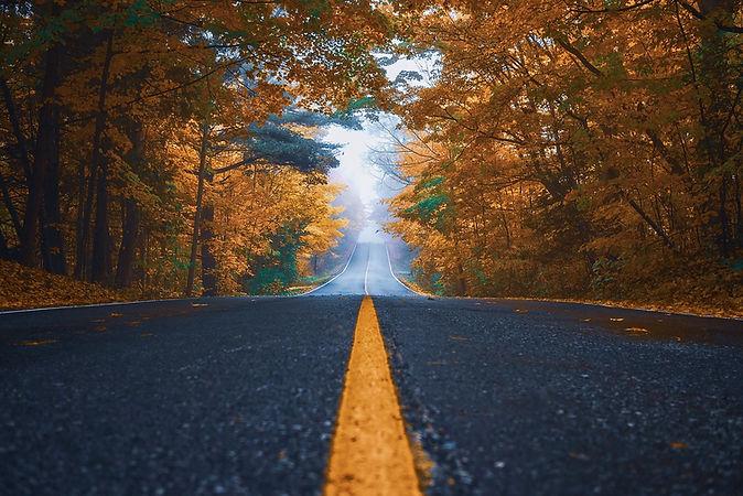 autumn-3937289_1280.jpg