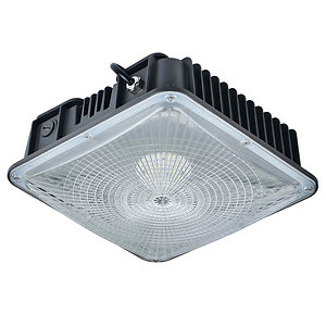 Canopy Light Gen1