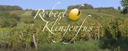 Robert Klinenfus