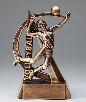 Trophy 3.png