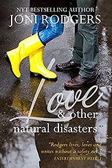 love disasters 2013.jpg