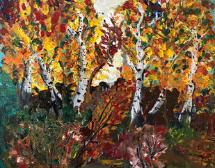 Birch Trees 2016