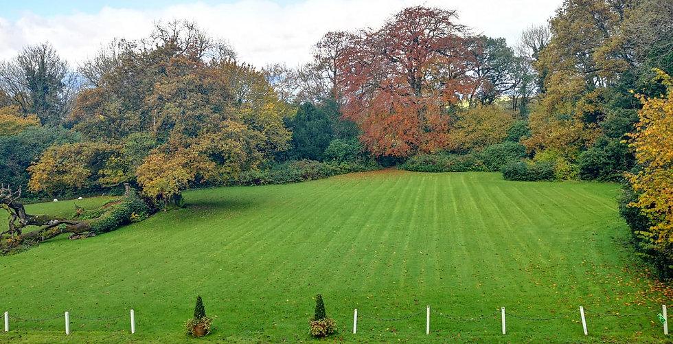 autumn-lawn-glansevin.jpg