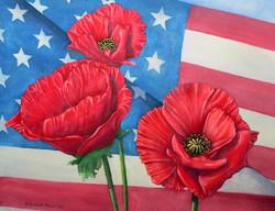 veteran's poppies - we remember