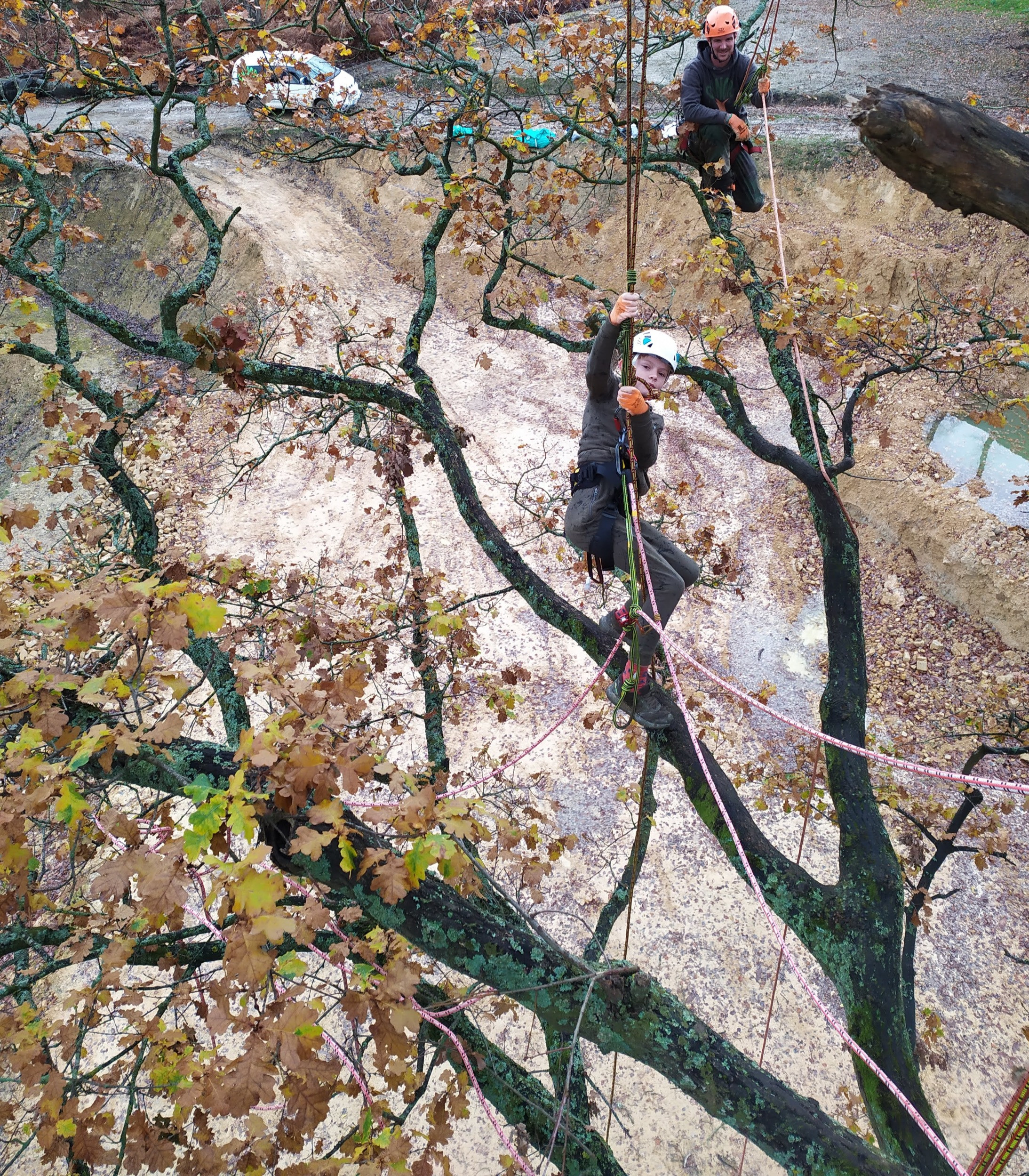 TREE CLIMBING ADVENTURE up to 4 people