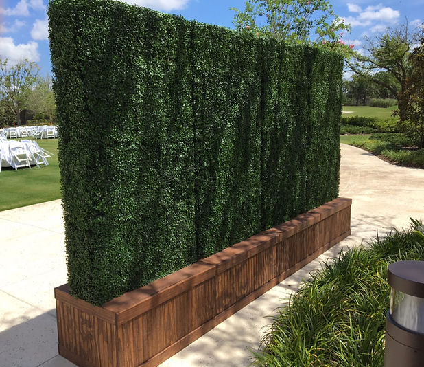 Hedge Walls.jpg