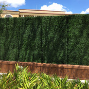 Side by Side Hedge Walls