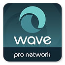 Wave Bookkeeping Pro Network