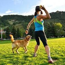 dogs exercising.jpg