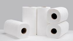Paper Towels (Various)