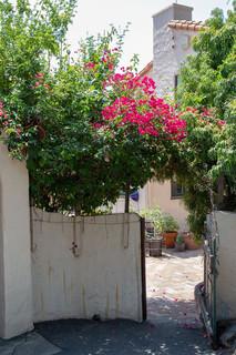 Entrance to Casa Moore.jpg