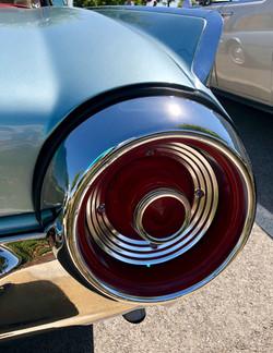 Thunderbird - IMG_0305