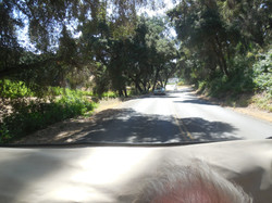 Drive Tour - Inside the Packard 09