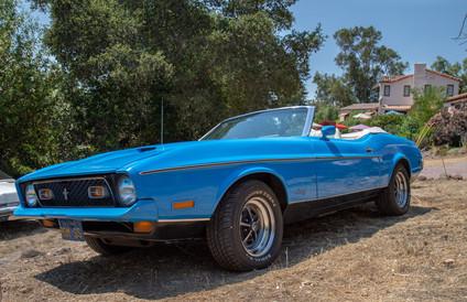 The Moores Mustang.jpg
