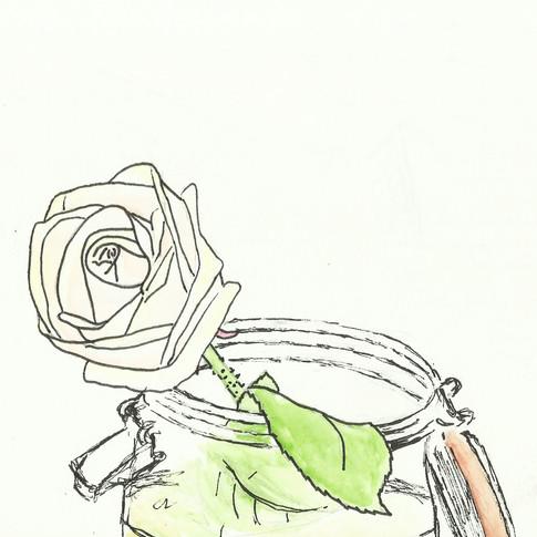 Rose, 2016