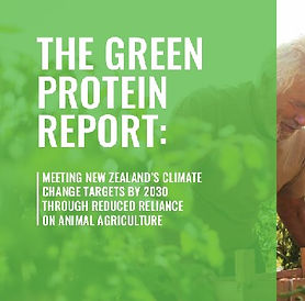 Green%20Protein%20Report_edited.jpg