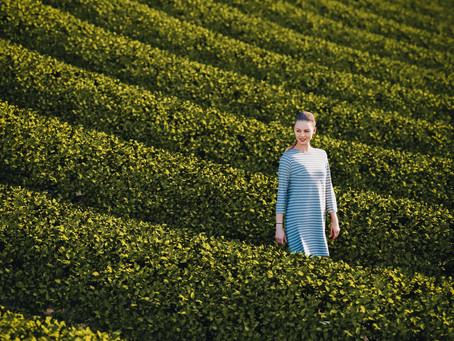 Corona Render Free Tutorial Lesson - Tea Plantation Field