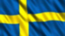 Sweden flag.jpg