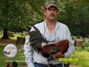 Criadero de Gallos de Combate y pie de C
